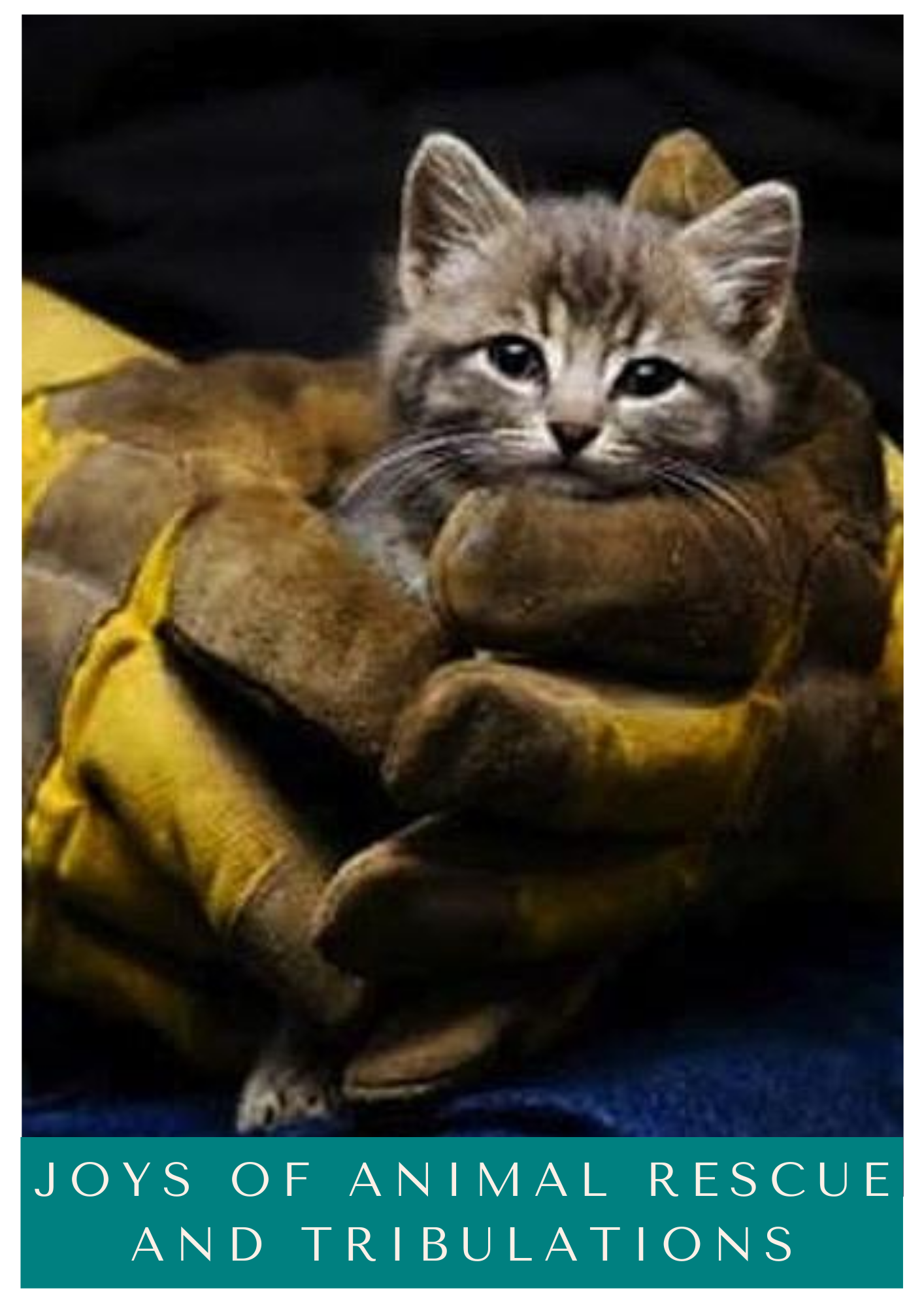 Click for Joys of Animal Rescue and Tribulations