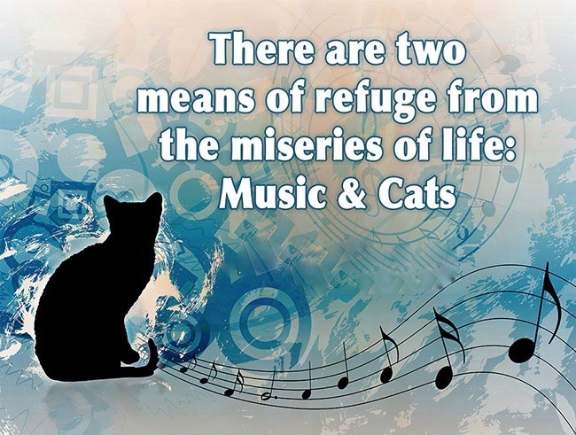 There are two means of refuge from the miseries of life:  Music & Cats